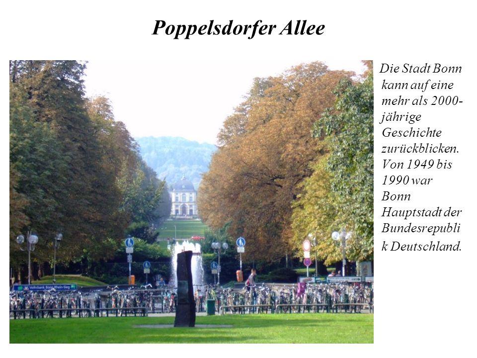 Poppelsdorfer Allee Die Stadt Bonn kann auf eine mehr als 2000- jährige Geschichte zurückblicken. Von 1949 bis 1990 war Bonn Hauptstadt der Bundesrepu