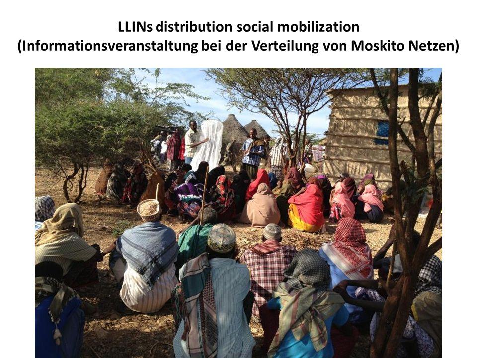 LLINs distribution social mobilization (Informationsveranstaltung bei der Verteilung von Moskito Netzen)