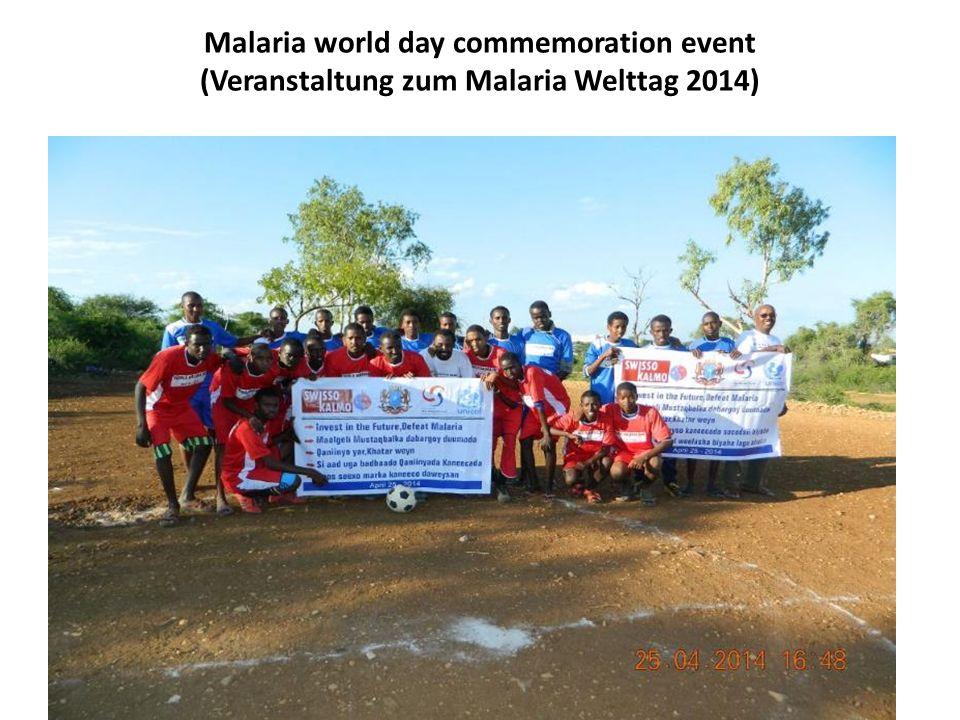 Malaria world day commemoration event (Veranstaltung zum Malaria Welttag 2014)