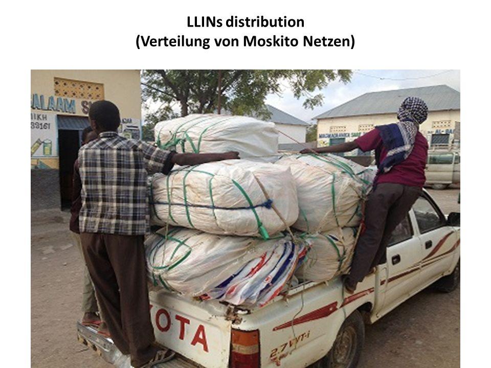 LLINs distribution (Verteilung von Moskito Netzen)