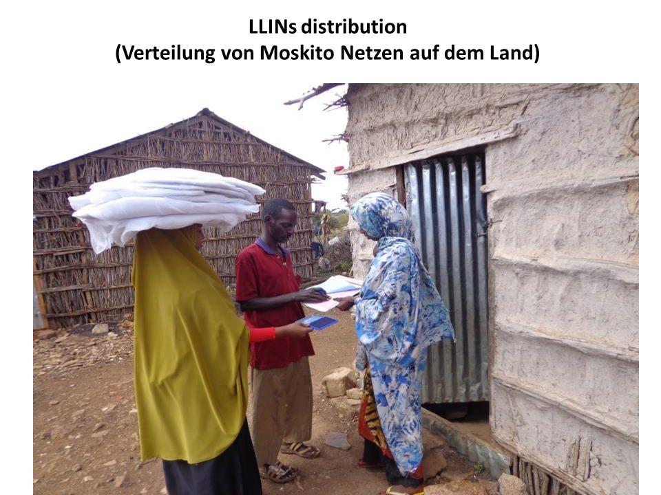 LLINs distribution (Verteilung von Moskito Netzen auf dem Land)
