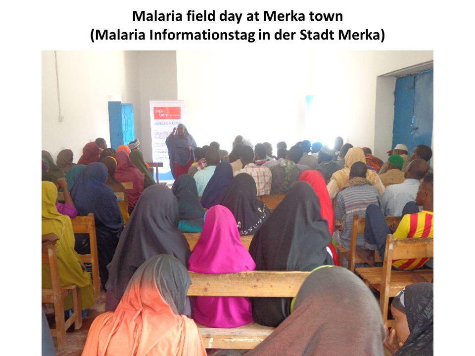 Malaria field day at Merka town (Malaria Informationstag in der Stadt Merka)