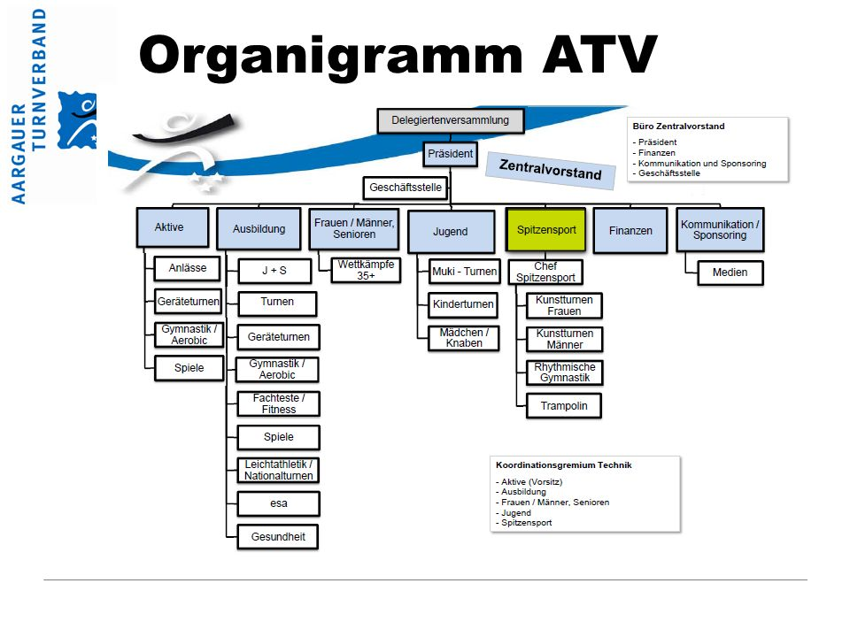 Organigramm ATV