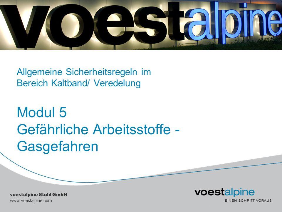|| voestalpine Stahl GmbH Gefährdung durch austretende Gase Achten Sie auf die mit Hinweisschildern gekennzeichneten Gasgefahrenbereiche.