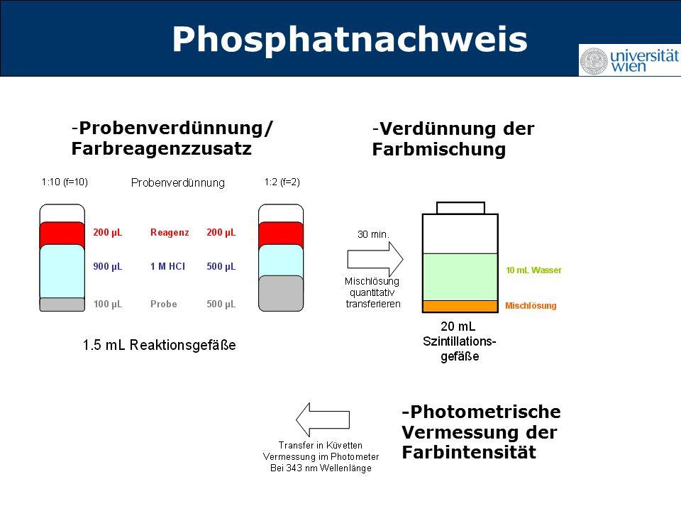 Titelmasterformat durch Klicken Phosphatnachweis -Probenverdünnung/ Farbreagenzzusatz -Verdünnung der Farbmischung -Photometrische Vermessung der Farbintensität