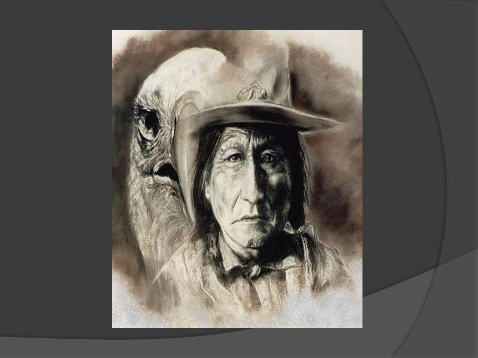 Im Juni 1876 versammelten sich die Hunkpapas, Teton-Sioux, Arapahoes und Cheyenne im Rosebud Tal zu einem Sonnentanz, die wohl größte Kriegsmacht, die