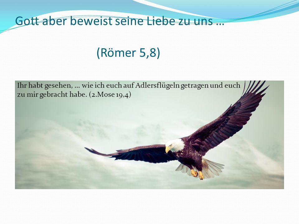 Ihr habt gesehen,... wie ich euch auf Adlersflügeln getragen und euch zu mir gebracht habe.