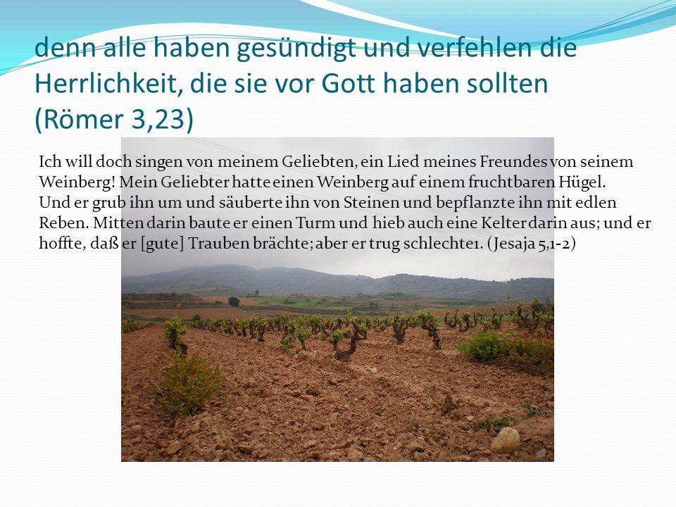 denn alle haben gesündigt und verfehlen die Herrlichkeit, die sie vor Gott haben sollten (Römer 3,23) Ich will doch singen von meinem Geliebten, ein Lied meines Freundes von seinem Weinberg.