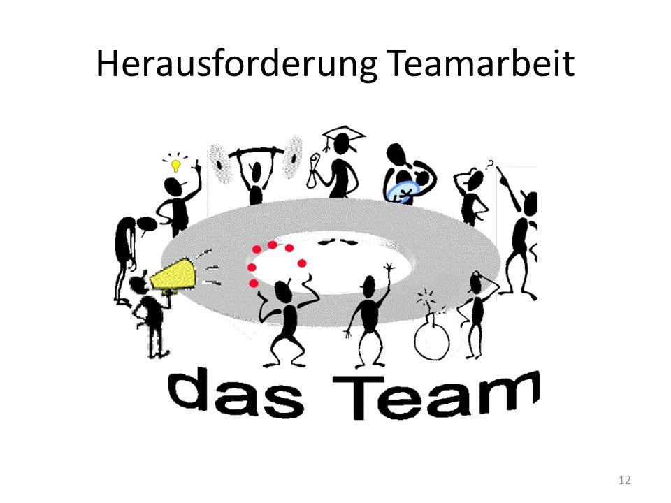 Herausforderung Teamarbeit 12