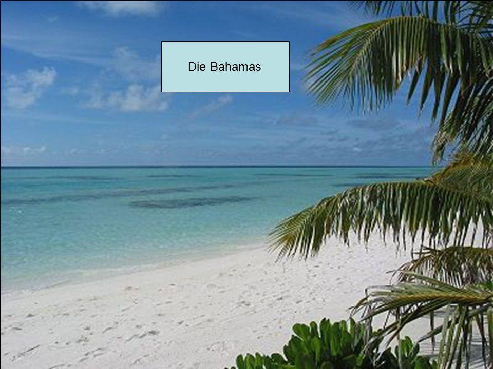 Die Bahamas