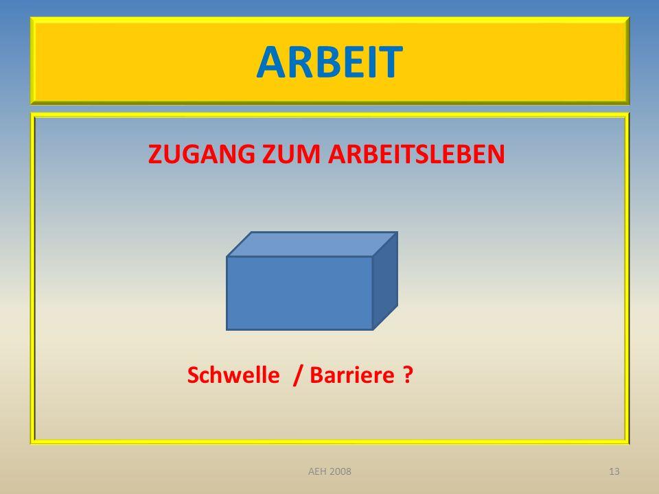 ARBEIT ZUGANG ZUM ARBEITSLEBEN Schwelle / Barriere ? 13AEH 2008
