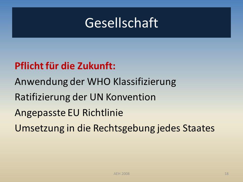 Pflicht für die Zukunft: Anwendung der WHO Klassifizierung Ratifizierung der UN Konvention Angepasste EU Richtlinie Umsetzung in die Rechtsgebung jedes Staates 18 Gesellschaft AEH 2008