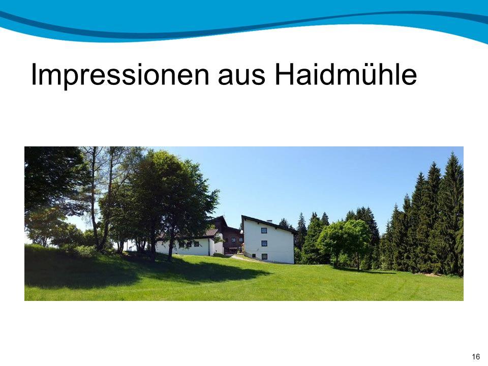 Impressionen aus Haidmühle 15