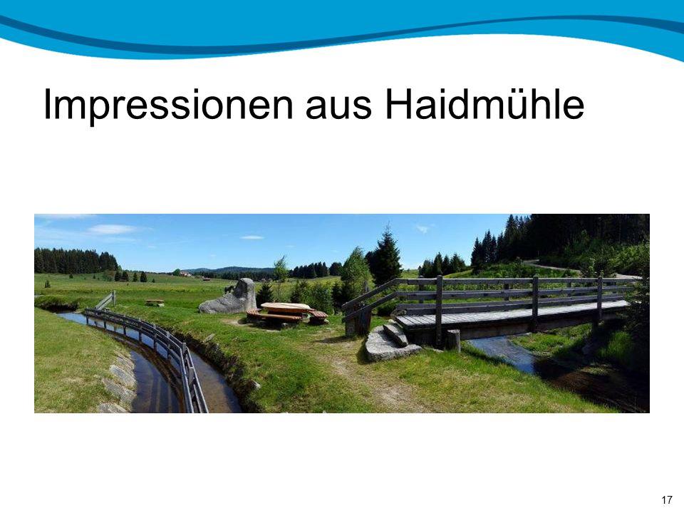 Impressionen aus Haidmühle 16