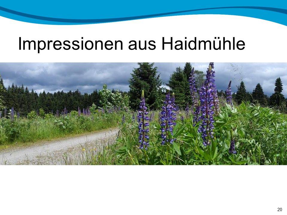 Impressionen aus Haidmühle 19