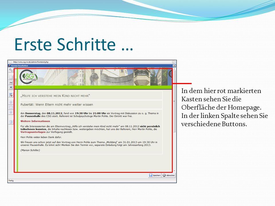 Erste Schritte … In dem hier rot markierten Kasten sehen Sie die Oberfläche der Homepage.