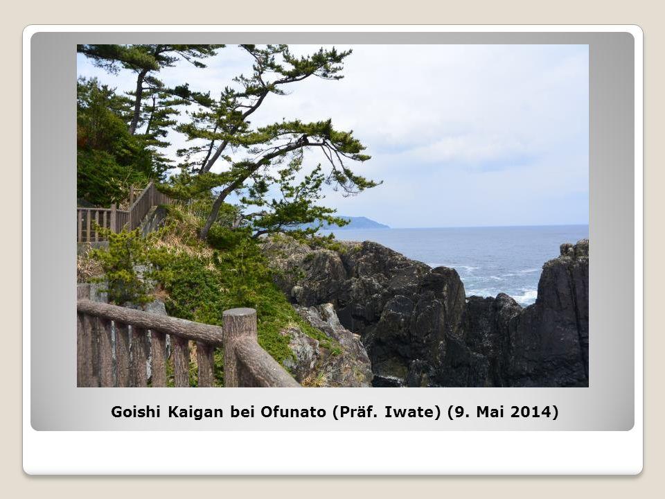Goishi Kaigan bei Ofunato (Präf. Iwate) (9. Mai 2014)