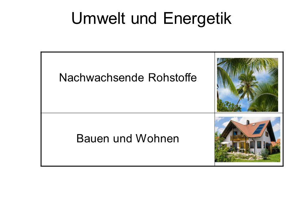 Umwelt und Energetik Nachwachsende Rohstoffe Bauen und Wohnen