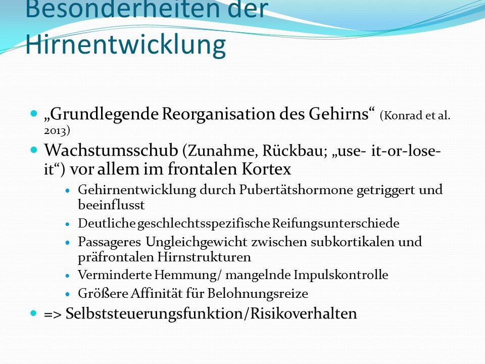 """Besonderheiten der Hirnentwicklung """"Grundlegende Reorganisation des Gehirns (Konrad et al."""