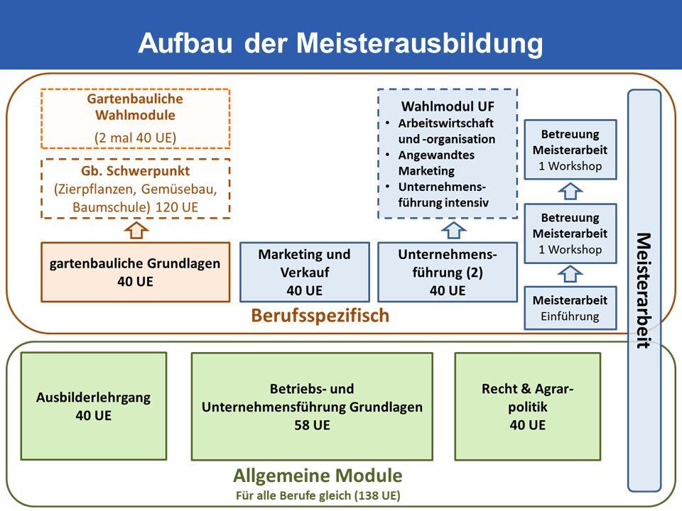 Lehrlings- und Fachausbildungsstelle Aufbau der Meisterausbildung