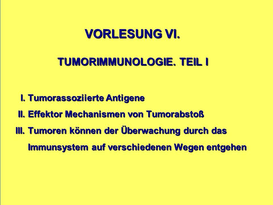VORLESUNG VI. TUMORIMMUNOLOGIE. TEIL I I. Tumorassoziierte Antigene II.
