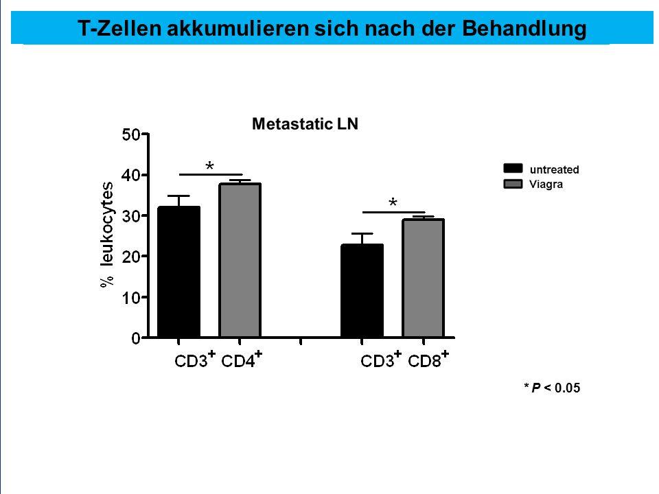 * P < 0.05 T-Zellen akkumulieren sich nach der Behandlung