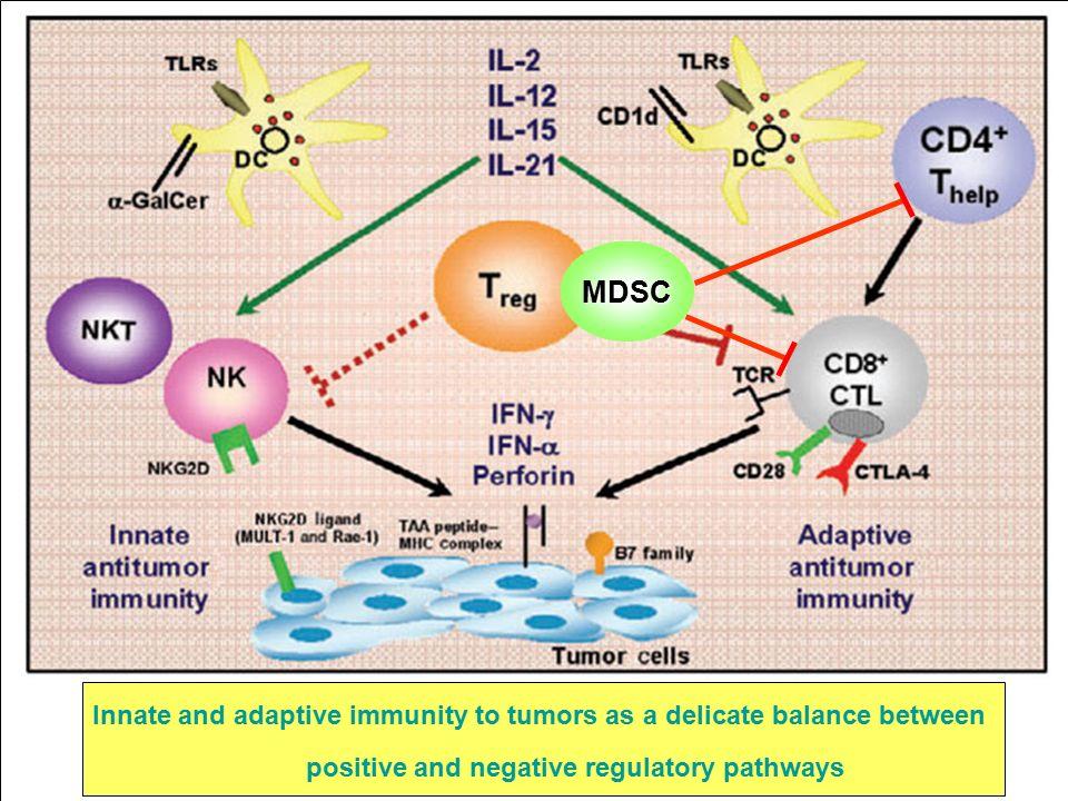 CD3 + CD4 + CD25 + FoxP3 + REGULATORY T CELLS (T reg)