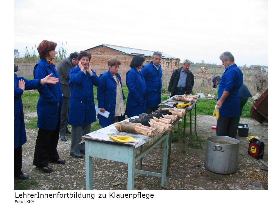 LehrerInnenfortbildung zu Klauenpflege Foto: KKA