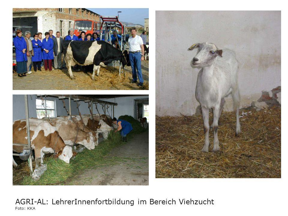 AGRI-AL: LehrerInnenfortbildung im Bereich Viehzucht Foto: KKA