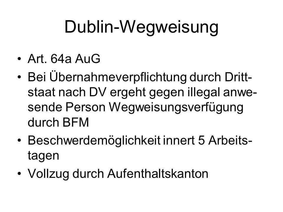 Dublin-Wegweisung Art.
