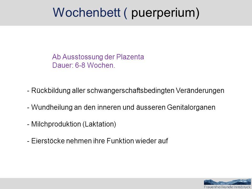 Wochenbett ( puerperium) Ab Ausstossung der Plazenta Dauer: 6-8 Wochen. - Rückbildung aller schwangerschaftsbedingten Veränderungen - Wundheilung an d