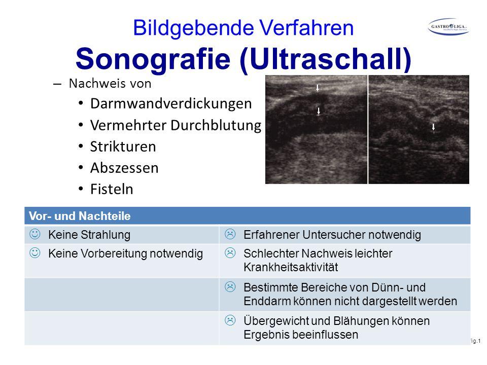 Bildgebende Verfahren Sonografie (Ultraschall) – Nachweis von Darmwandverdickungen Vermehrter Durchblutung Strikturen Abszessen Fisteln Abb.: Parente
