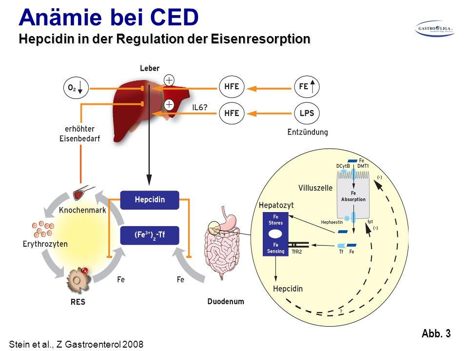 Abb. 3 Anämie bei CED Hepcidin in der Regulation der Eisenresorption Stein et al., Z Gastroenterol 2008