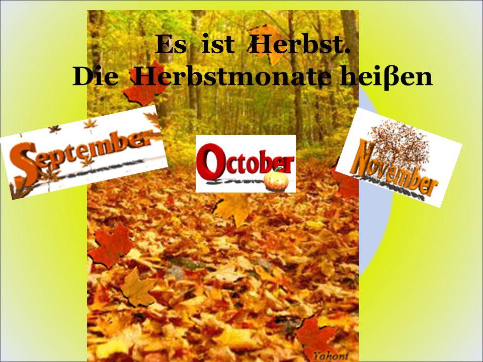 Es ist Herbst. Die Herbstmonate heiβen