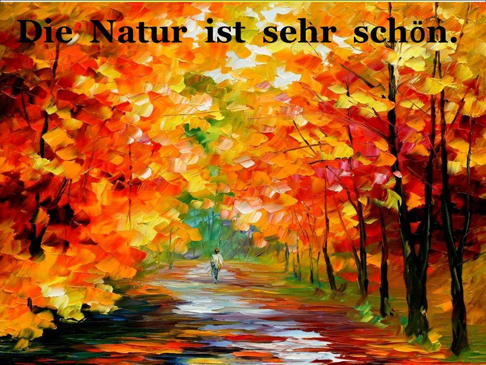 Die Natur ist sehr sch ӧ n.