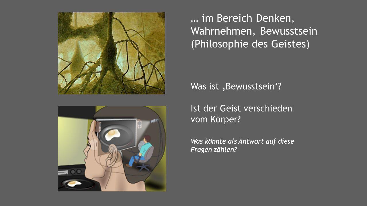 Aristoteles Descartes Wittgenstein Peirce Platon Nussbaum Hegel Hume Habermas Arendt Heideggger Adorno Sokrates Geschichte der Philosophie Rawls Kant Locke