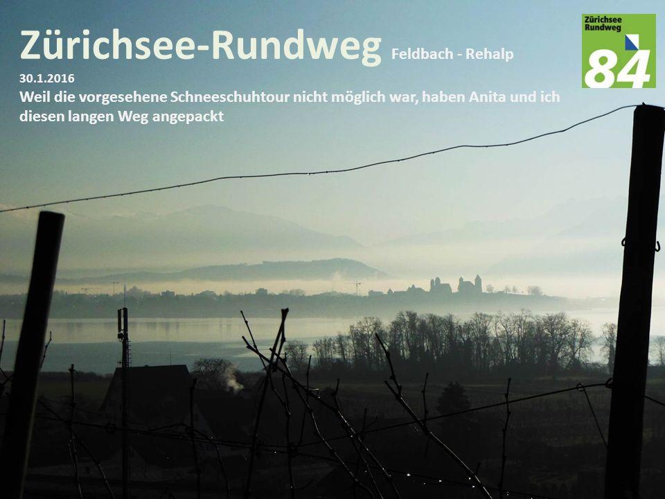 Zürichsee-Rundweg Feldbach - Rehalp 30.1.2016 Weil die vorgesehene Schneeschuhtour nicht möglich war, haben Anita und ich diesen langen Weg angepackt