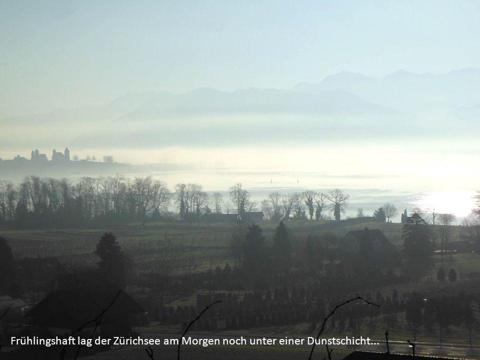 Frühlingshaft lag der Zürichsee am Morgen noch unter einer Dunstschicht...