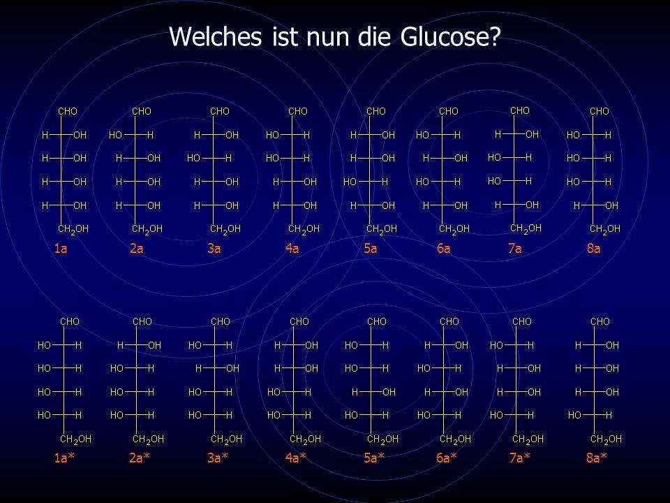Welches ist nun die Glucose? 1a2a3a4a5a6a7a8a 1a*2a*3a*4a*5a*6a*7a*8a*