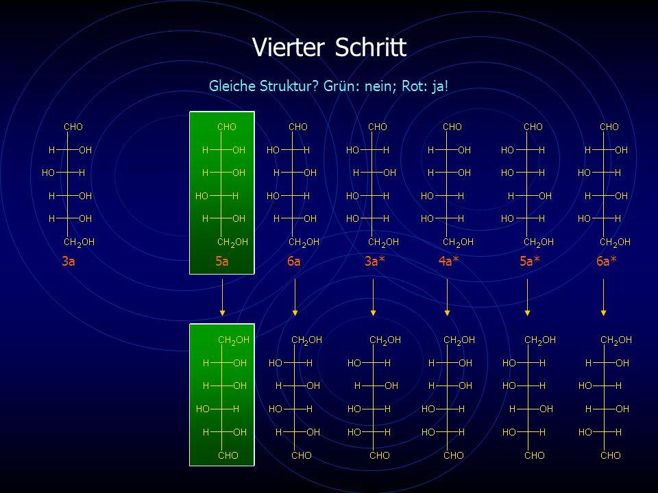 Vierter Schritt 3a5a6a4a*6a* Gleiche Struktur? Grün: nein; Rot: ja! 3a*5a*