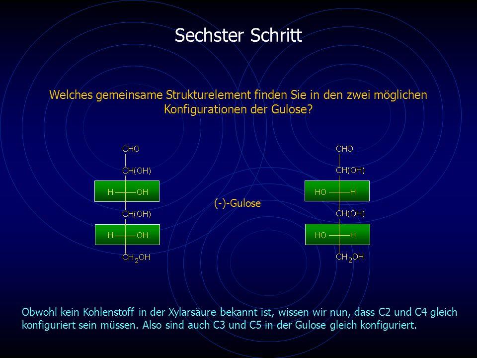 Sechster Schritt Welches gemeinsame Strukturelement finden Sie in den zwei möglichen Konfigurationen der Gulose.