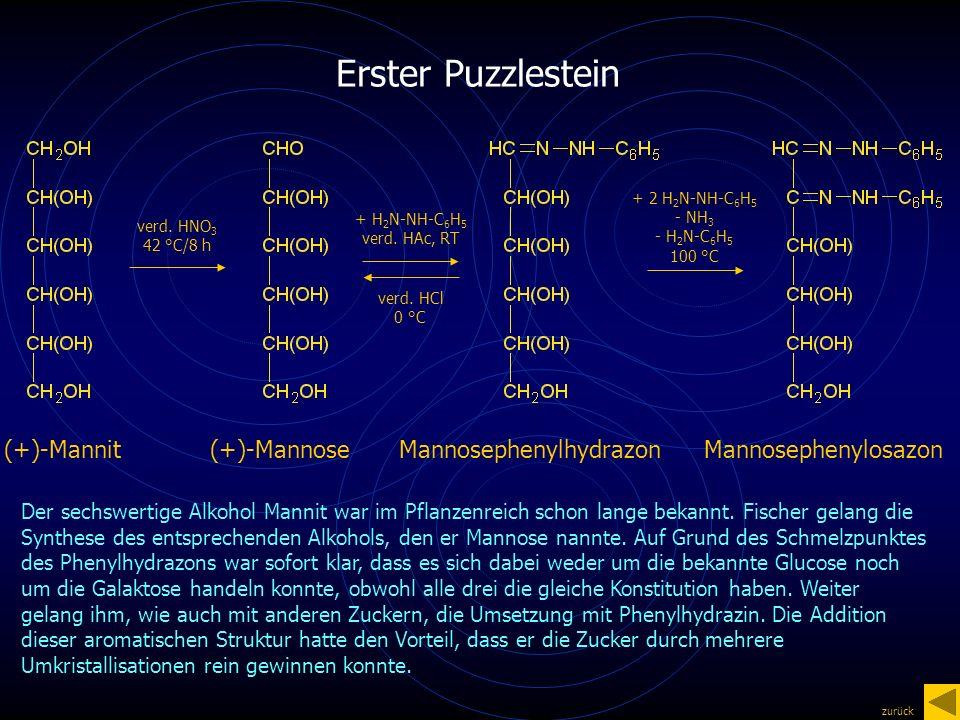 Erster Puzzlestein + H 2 N-NH-C 6 H 5 verd. HAc, RT verd.