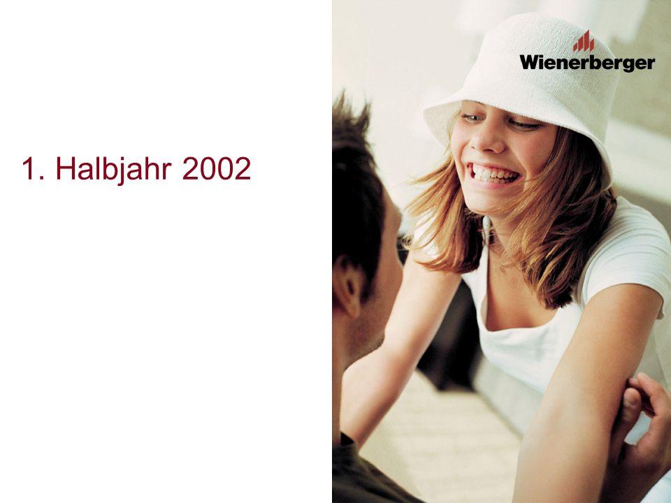 Ausblick und Ziel 2002