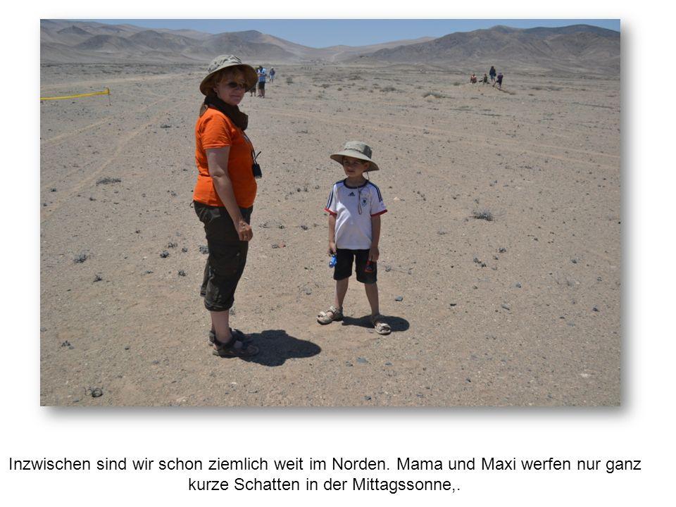 Wüste: Bergbauaktivitäten in der Küstenkordillere