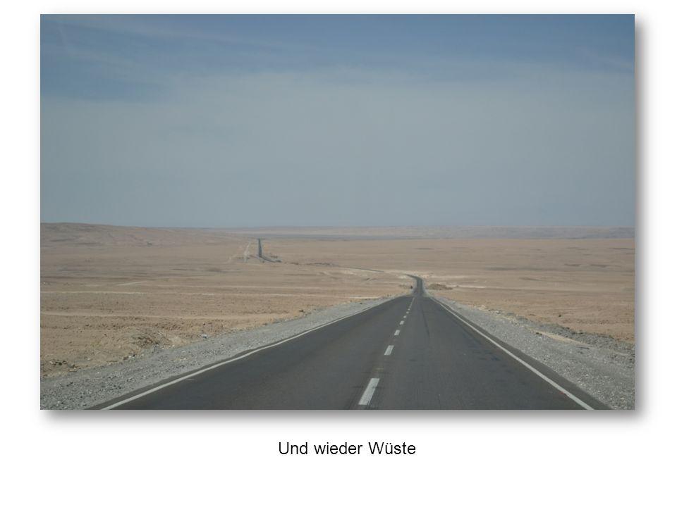Und wieder Wüste