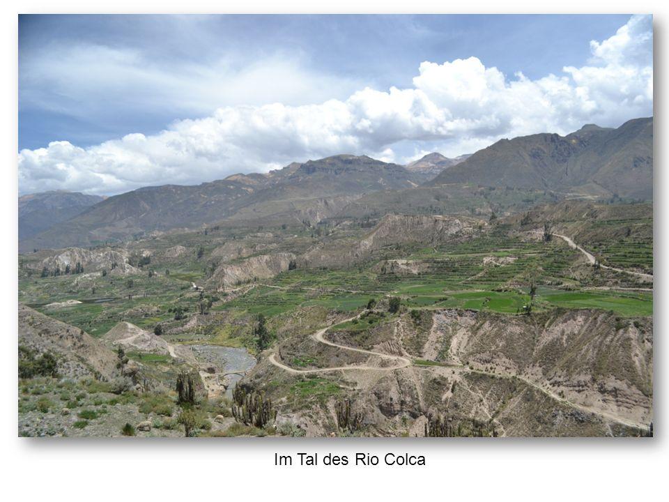 Im Tal des Rio Colca