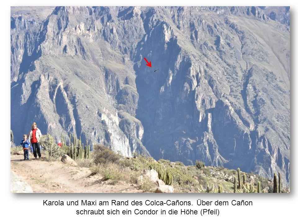 Karola und Maxi am Rand des Colca-Cañons. Über dem Cañon schraubt sich ein Condor in die Höhe (Pfeil)