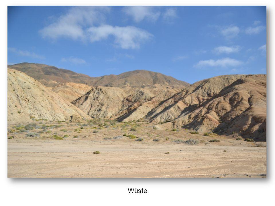 Häusermeer in der Wüste: Hafenstadt Iquique
