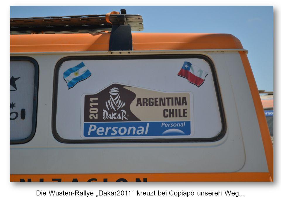 """Die Wüsten-Rallye """"Dakar2011"""" kreuzt bei Copiapó unseren Weg..."""