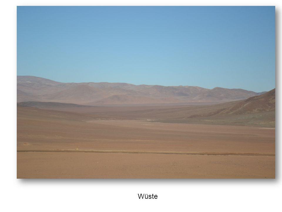 Wüste – immerhin ein riesiger Sandspielplatz